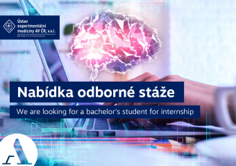 We are looking for a bachelor's student for internship